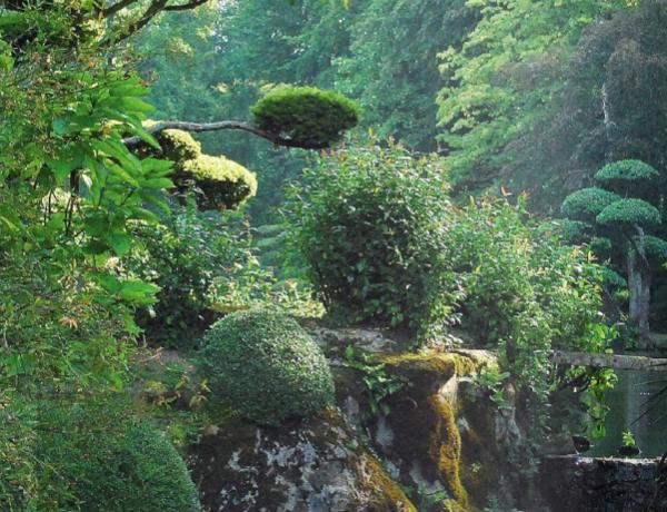 nature sublimée inspiration japonaise