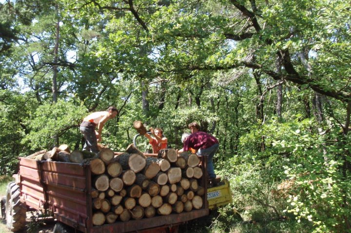 L'association Dryade a créé une Amap pour le bois de chauffage dans la Drôme