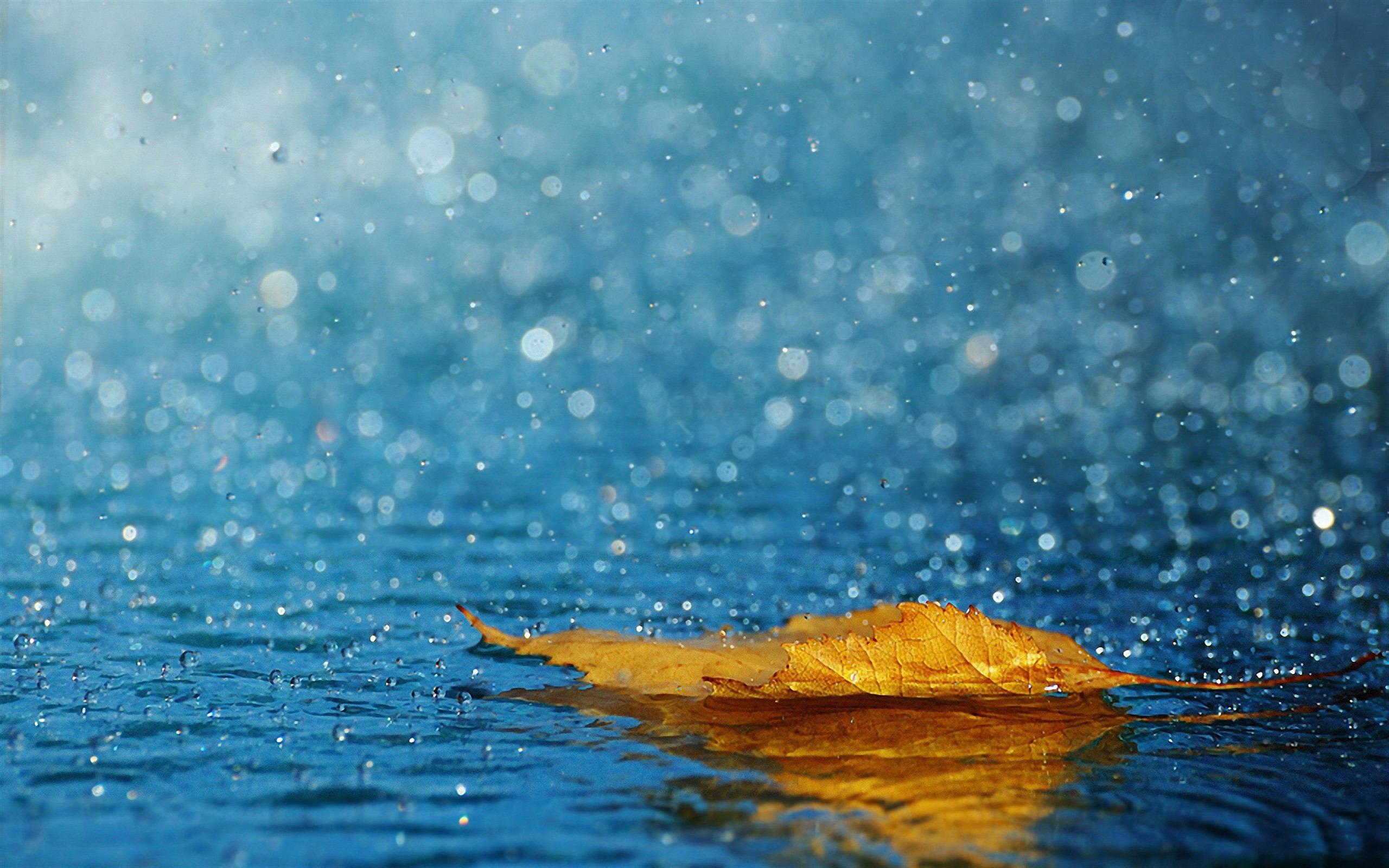google image eau de pluie